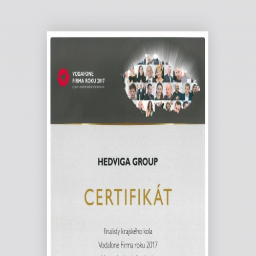 COMPANY OF THE YEAR 2017</br>2nd place for HEDVIGA GROUP